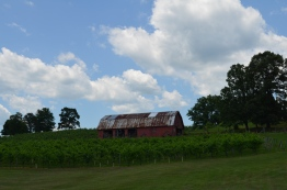 Five Wineries to Visit in North Georgia- Three Sisters Barn- www.afriendafar.com- #threesisters #northgeorgiawineries