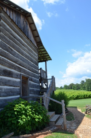 Five Wineries to Visit in North Georgia- Cavender Creek Log Cabin and Vineyards- www.afriendafar.com- #cavendercreek #northgeorgiawineries