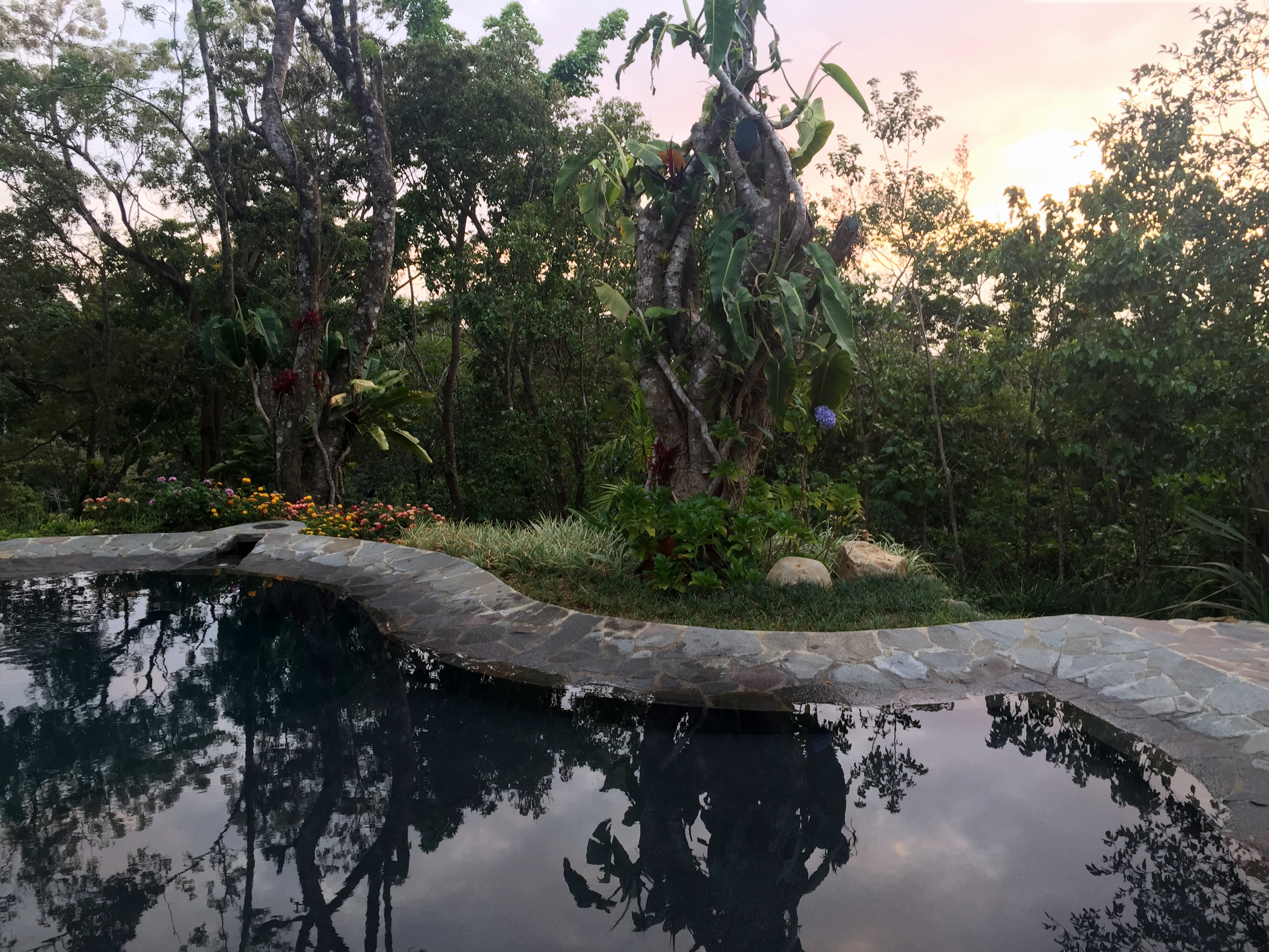 hot springs near Arenal: Guest Post: Leaving My Comfort Zone in Costa Rica- Tarantula- www.afriendafar.com #costarica